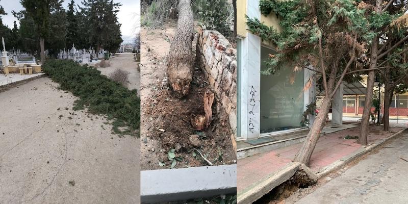 Θυελλώδεις άνεμοι και καταστροφές στην Αλεξανδρούπολη