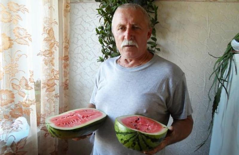 To θύμα της επίθεσης της αρκούδας, ο 66χρονος Αλεξάντερ Κορνέγιεφ.