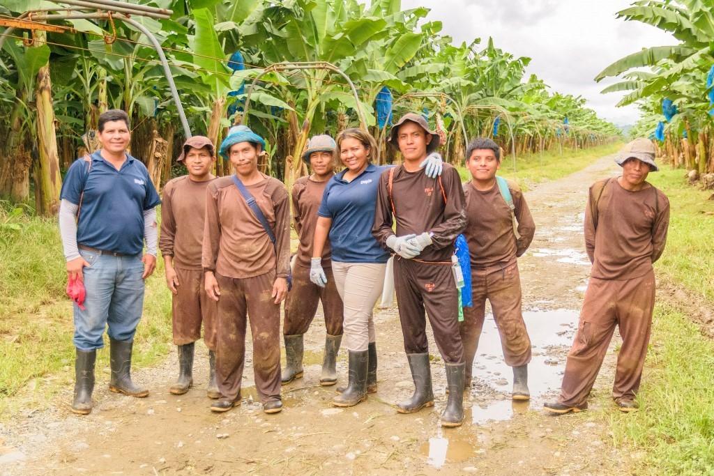 Εργάτες σε φυτείες
