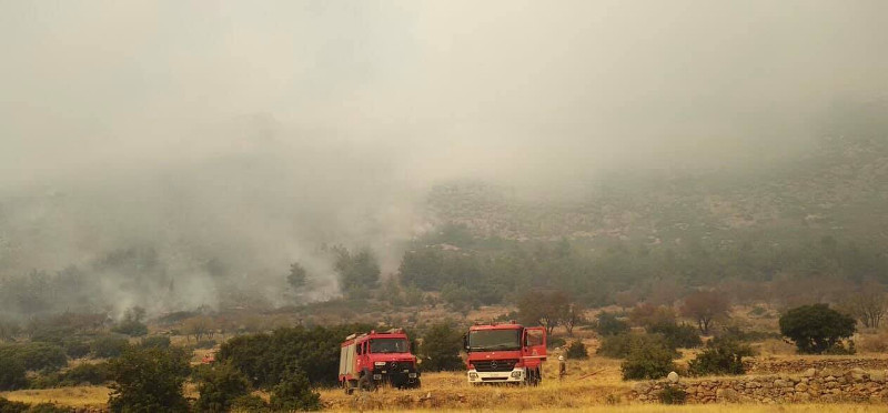 Μαίνεται η φωτιά στους Δελφούς / Φωτογραφία: desfinanews