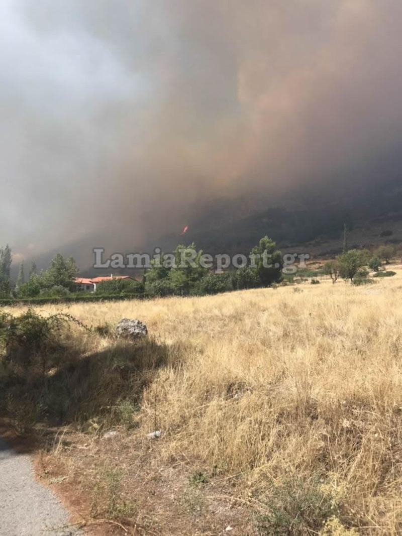 Η φωτιά είχε λάβει μεγάλες διαστάσεις / Φωτογραφία: lamiareport.gr