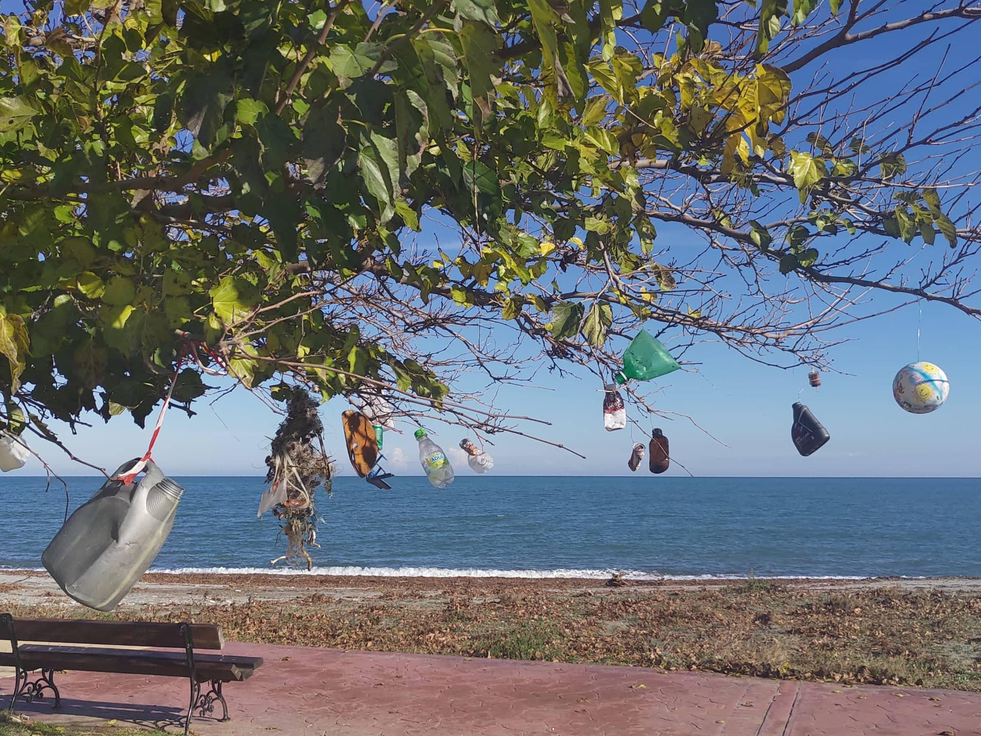 Σκουπίδια κρεμασμένα σε δέντρο