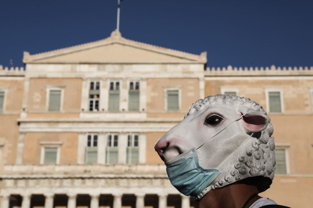 Ο διαδηλωτής φορούσε μάσκα από πρόβατο και μάσκα μίας χρήσης πάνω του / Φωτογραφία: George Vitsaras / SOOC