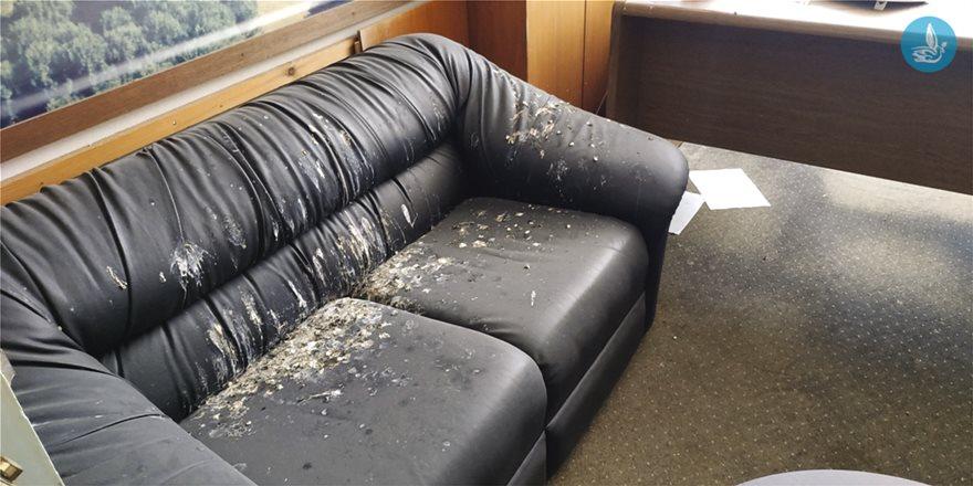 Ακαθαρσίες από πουλιά πάνω σε καναπέ του κτιρίου