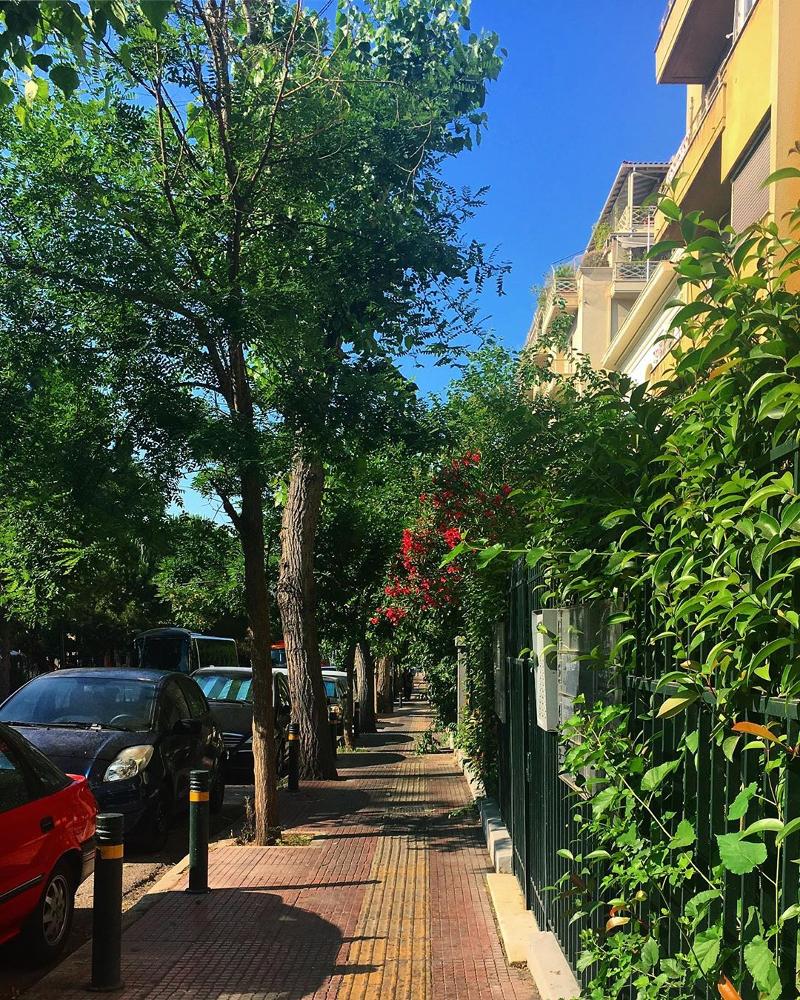 Δρόμος με δέντρα στην Κυψέλη