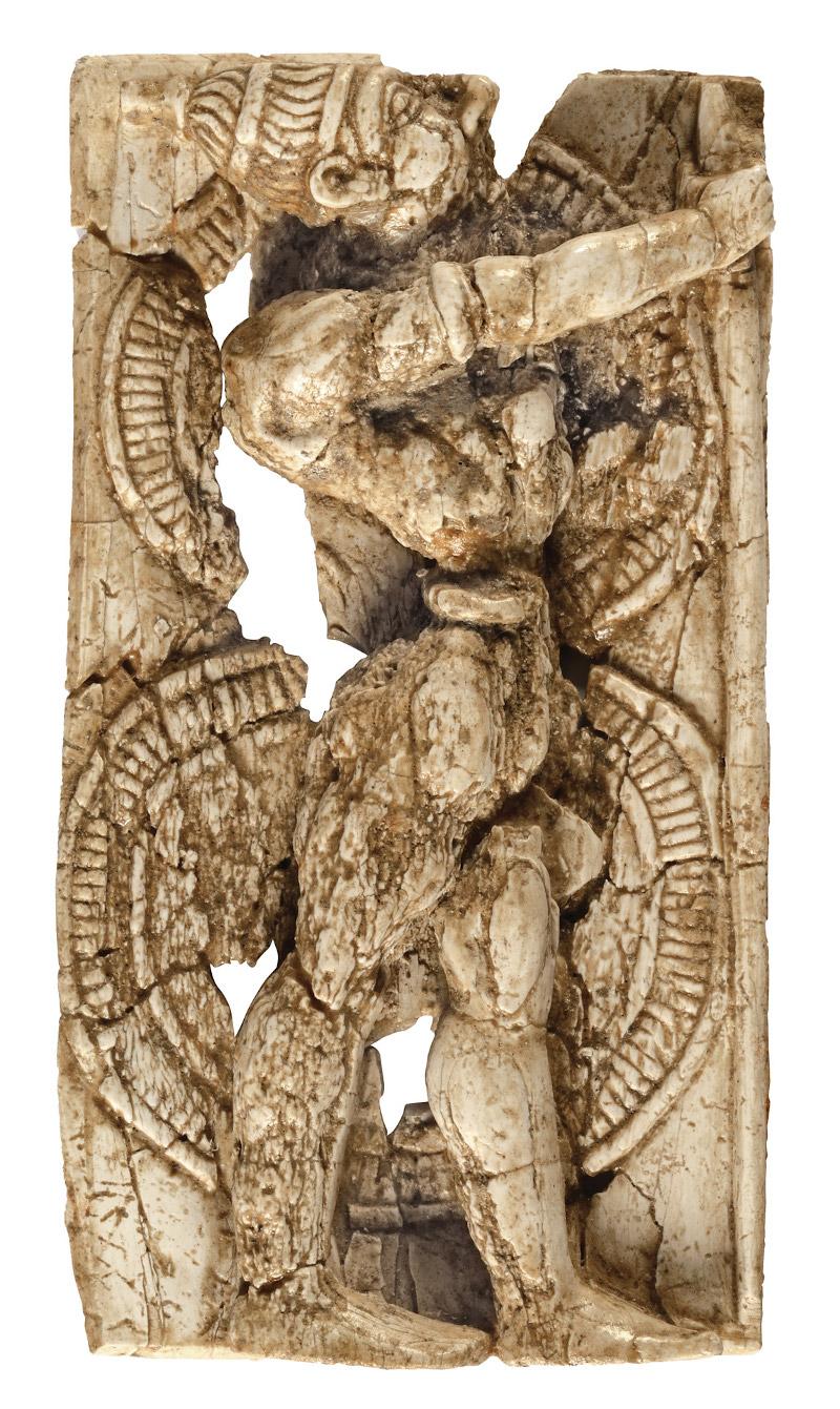 ελεφαντοδοντο