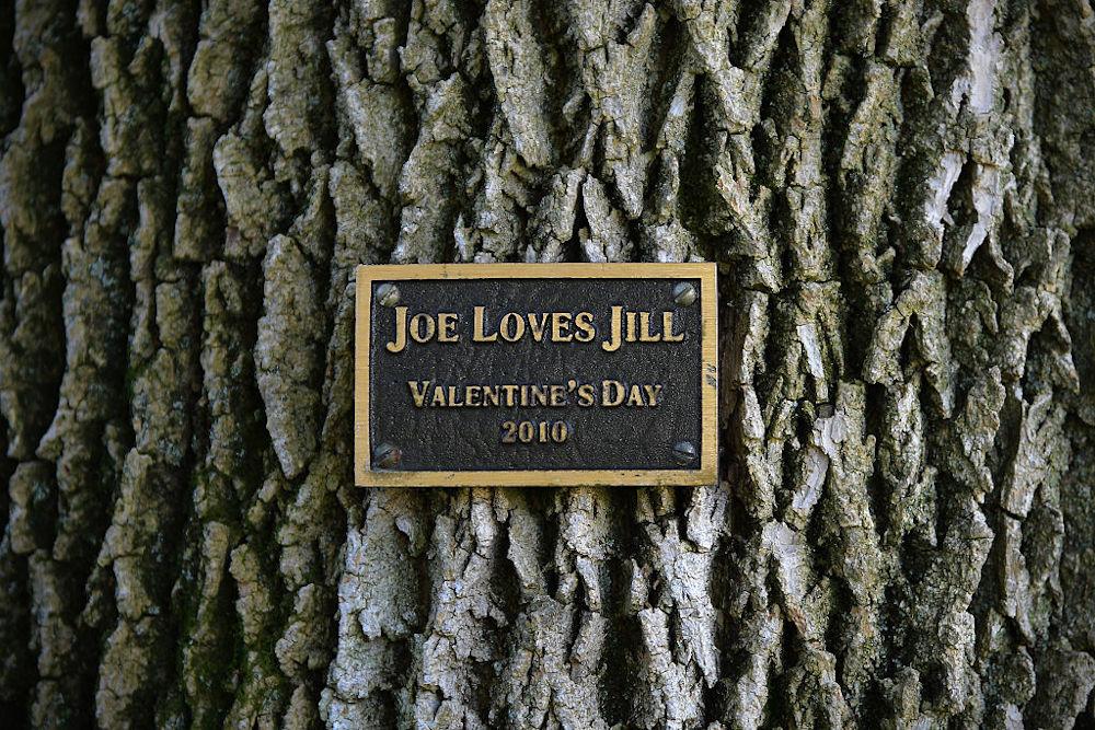 «Ο Τζο αγαπά την Τζιλ», Αγίου Βαλεντίνου 2010 / Φωτογραφία: GettyImages