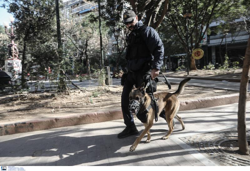 Αστυνομικός σκύλος σε περιπολία στην περιοχή των Εξαρχείων