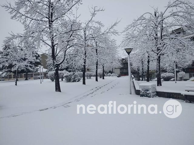 Χιονισμένο τοπίο στην Φλώρινα