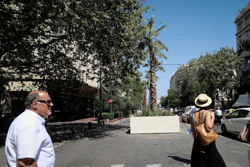 Φοίνικες τοποθετήθηκαν στην οδό Πανεπιστημίου στο κέντρο της Αθήνας