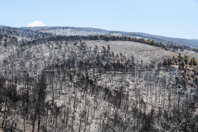 Στάχτη και αποκαΐδια από την πυρκαγιά στη Εύβοια