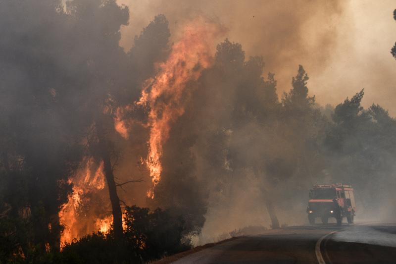 Ανεξέλεγκτη η φωτιά στην Εύβοια: Καίγεται δάσος Natura -Σε ετοιμότητα εκκένωσης δύο χωριά [εικόνες & βίντεο]
