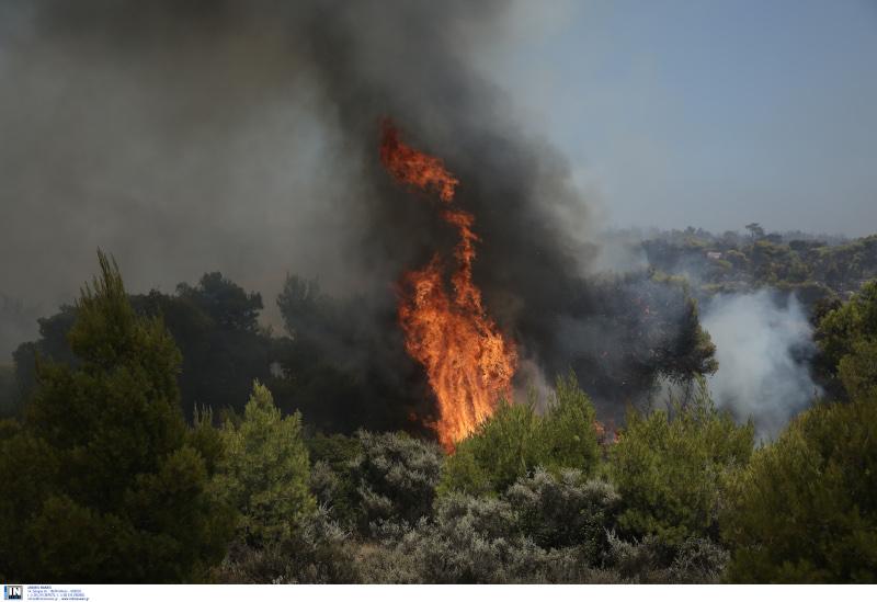 Φωτιά στο Λαύριο