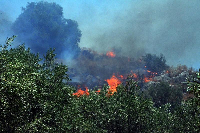 Οι δυνατοί άνεμοι δυσχέραιναν το έργο της Πυροσβεστικής-