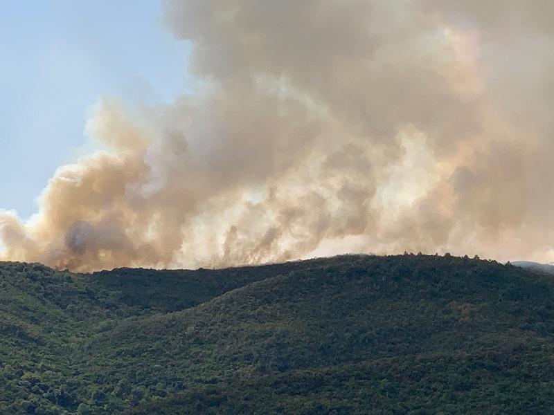 Μεγάλη κινητοποίηση της πυροσβεστικής για την πυρκαγιά στο Αγρίνιο