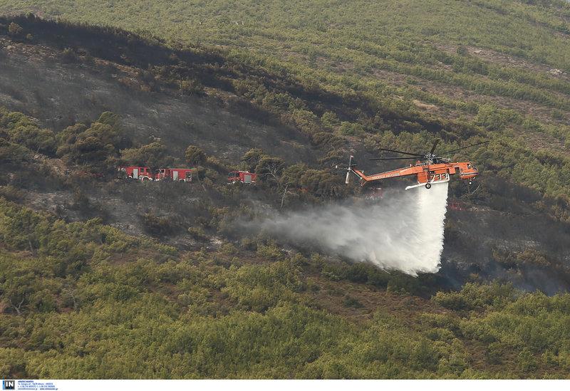 Μεγάλη φωτιά στη Νέα Μάκρη: Σε ύφεση τα πύρινα μέτωπα - Καταγγελίες για εμπρησμό fwtia nea makri 6 iefimerida