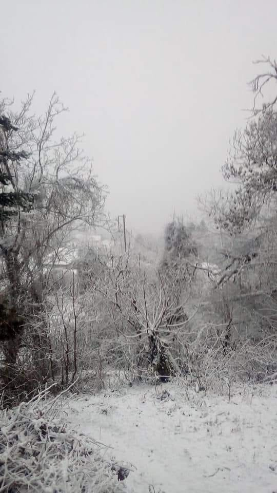 Χιόνια στο Γαρδίκι Φθιώτιδας