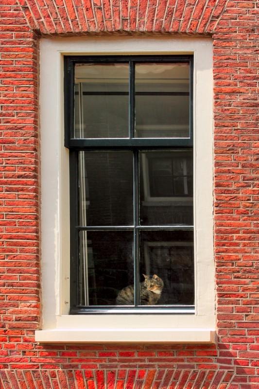 Τα παράθυρα στα κτήρια της Ολλανδίας είναι συνήθως μεγάλα και δεν έχουν κουρτίνες