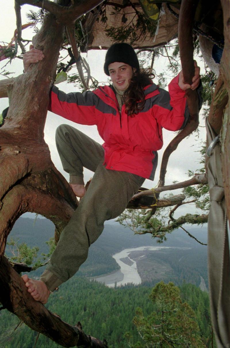 Η Τζούλια πάνω σε δέντρο