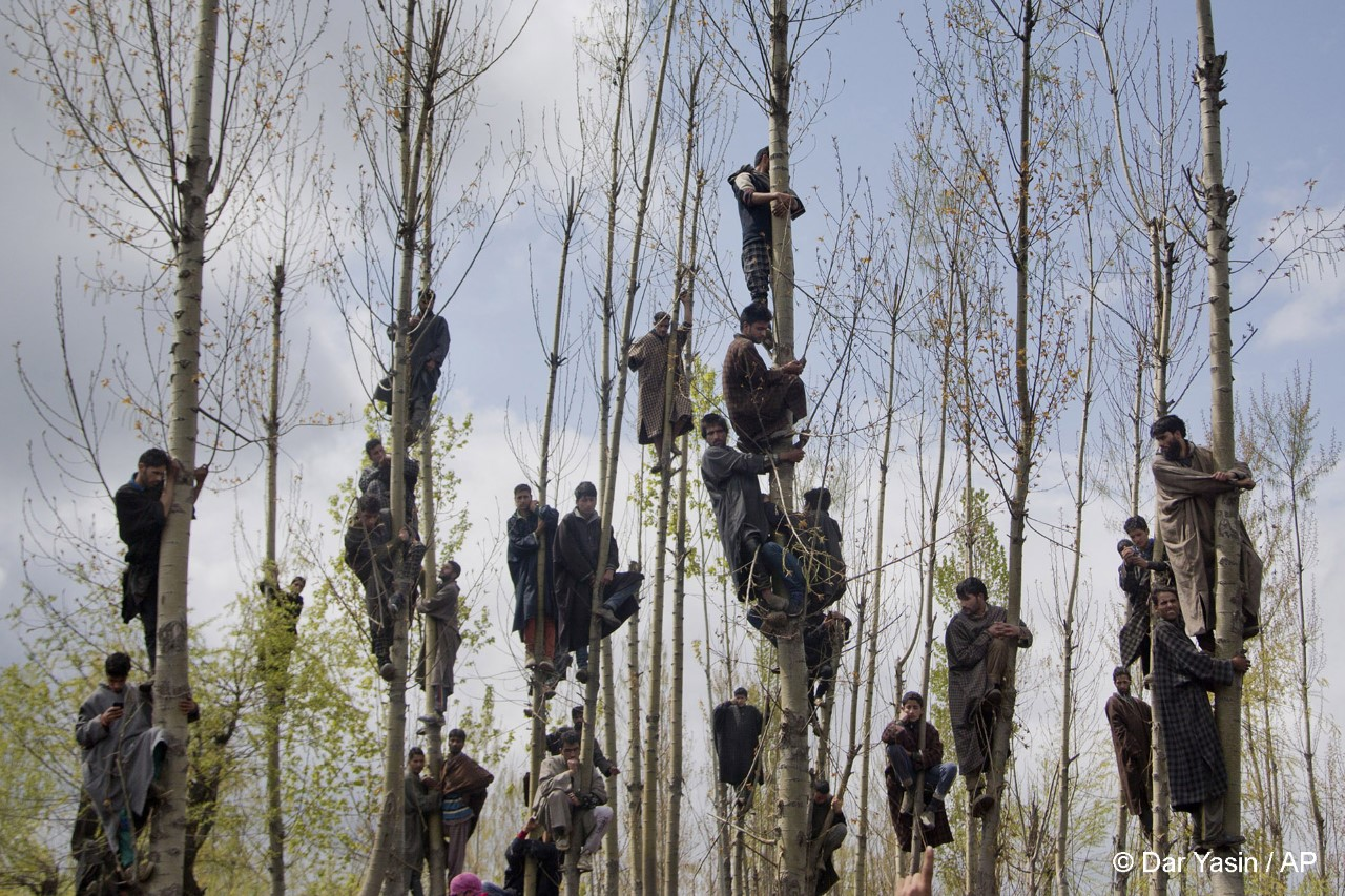 ανθρωποι πάνω σε δεντρα