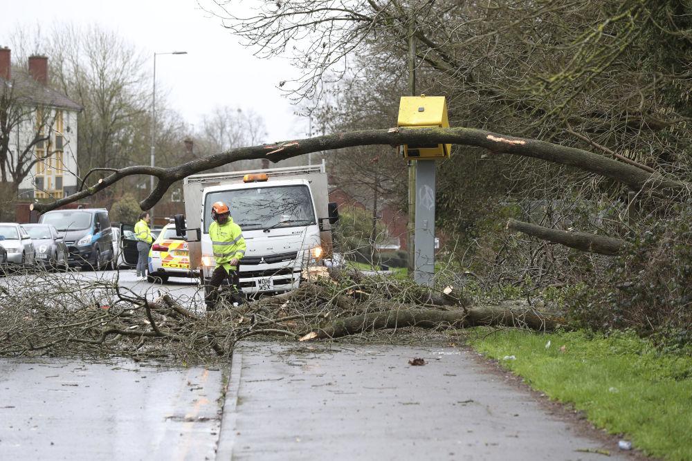 Δέντρα έπεσαν από την δύναμη του ανέμου στην Αγγλία κατά την επέλαση της καταιγίδας Κιάρα