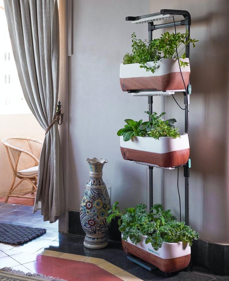 Κάθετος κήπος σε σαλόνι