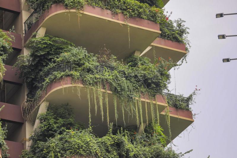 Κίνα πολυκατοικίες με φυτά