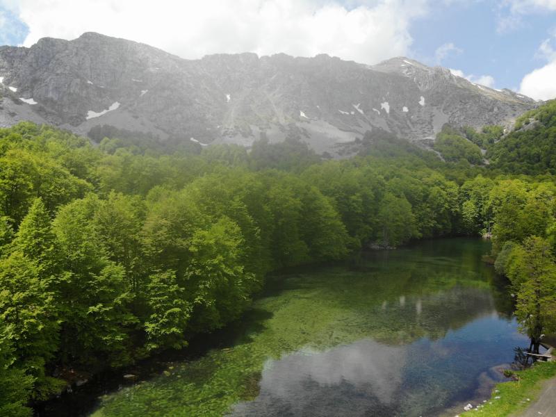 λιμνη βουνα πρασινο