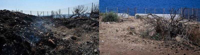 Οικόπεδο που σαρώθηκε από τη φωτιά