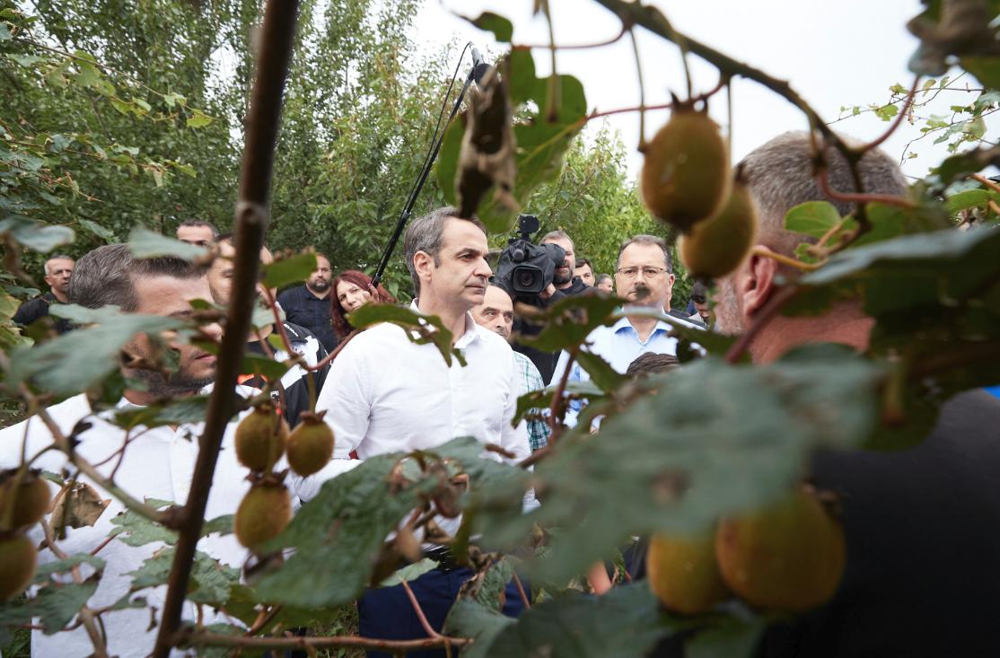 Ο Κυριάκος Μητσοτάκης επισκέφθηκε φυτείες ακτινιδίου