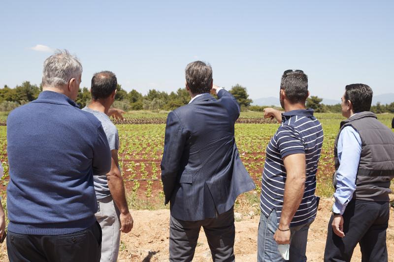 Επίσκεψη του Κυριάκου Μητσοτάκη σε αγρόκτημα στον Αυλώνα Αττικής