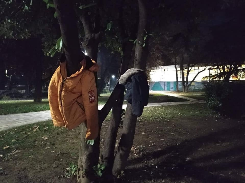 μπουφάν σε δέντρα στην Έδεσσα