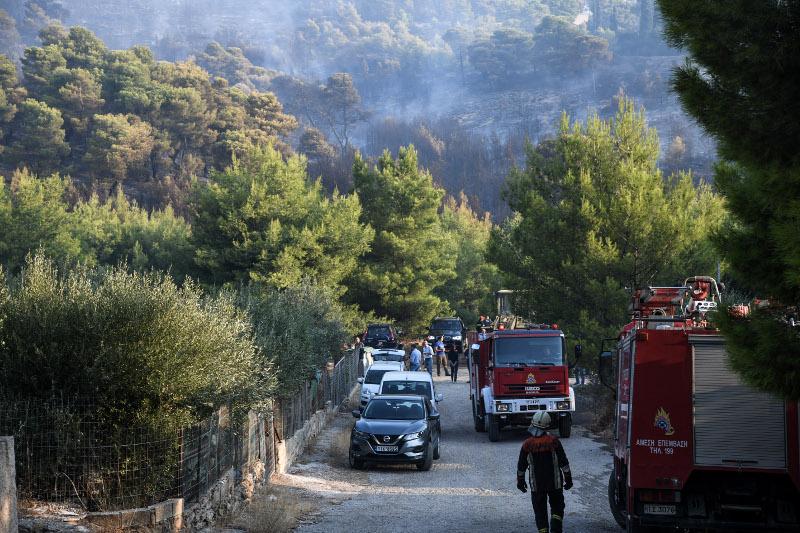 Φωτιά στη Νέα Μάκρη  Μεγάλη φωτιά στη Νέα Μάκρη: Σε ύφεση τα πύρινα μέτωπα - Καταγγελίες για εμπρησμό nea makri fotia 5 9 19