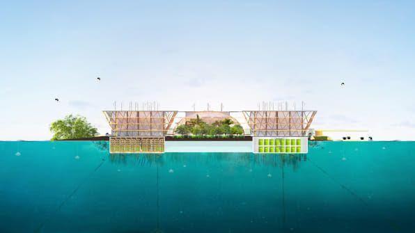 Μια ιδέα που θα ενισχύσει την αυτονομία των πλωτών πόλεων είναι η «ωκεανική καλλιέργεια», με την τοποθέτηση κλουβιών κάτω από τις πλατφόρμες για συγκομιδή φυκιών, χτενιών ή άλλων μορφών θαλασσινών / Φωτογραφία: BIG-Bjarke Ingels Group