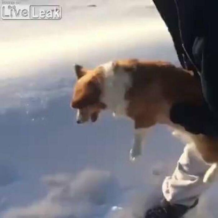 Ανδρας πετά σκύλο στο κενό από αεροπλάνο