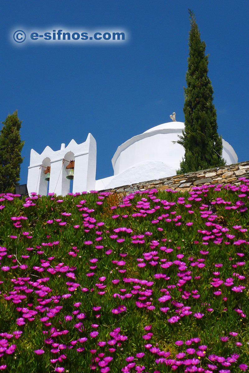 Μωβ λουλούδια σε πλαγιά εκκλησίας