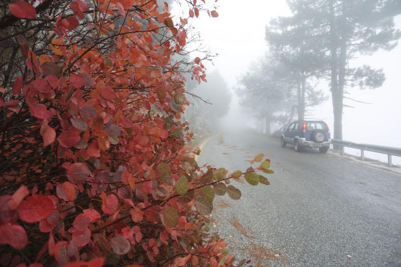 Ομίχλη στην Πάρνηθα