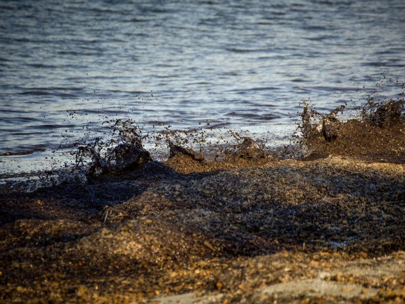 Στην Πρέβεζα τα κύματα έβγαλαν στη στεριά τα φύκια