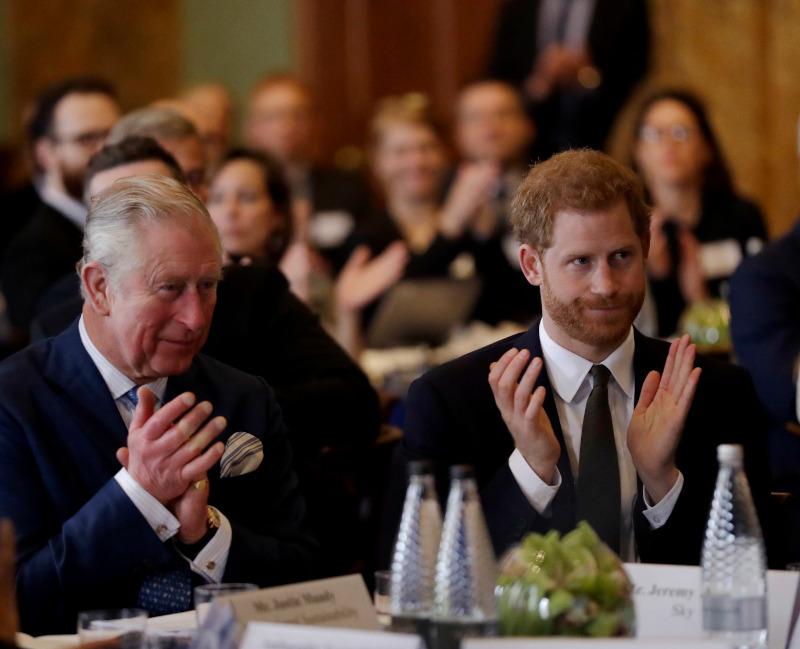 πρίγκιπας Χάρι και πρίγκιπας Κάρολος