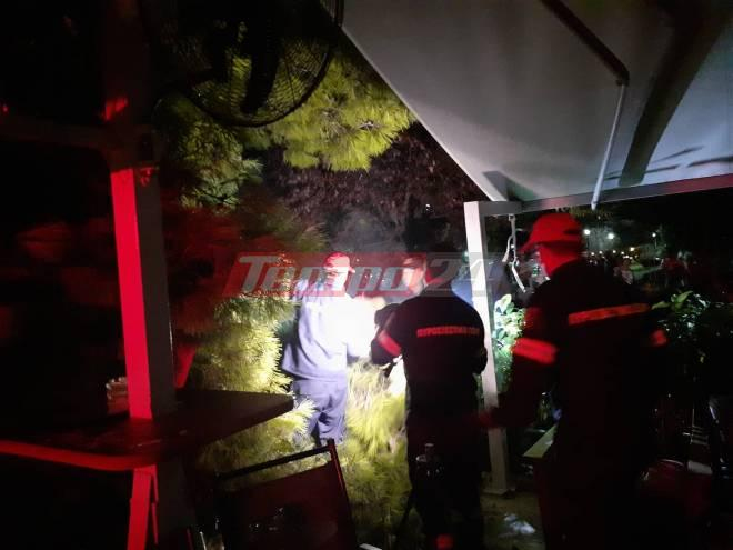 Πυροσβέστες απομακρύνουν το δέντρο