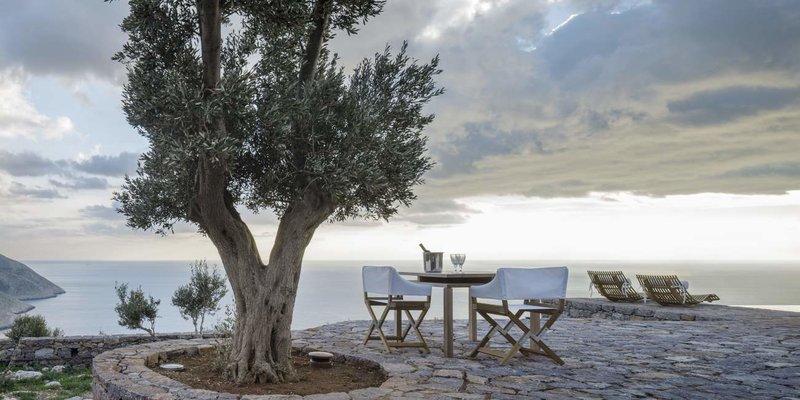 Καρέκλες και τραπέζι δίπλα σε μια ελιά