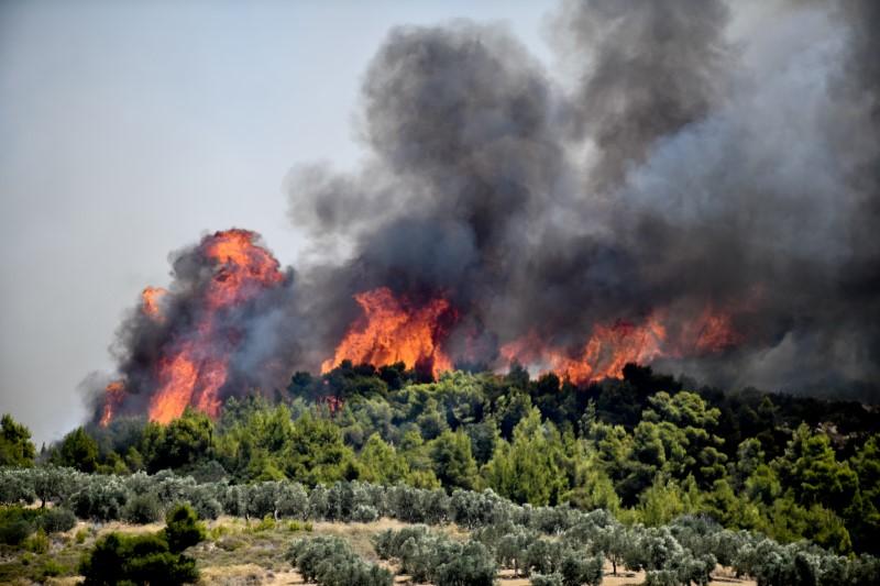 Φωτιά στις Κεχριές
