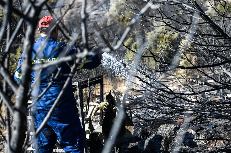 Πυροσβέστης επιχειρεί στο δάσος πάνω από την Παιανία για τυχόν μικροεστίες