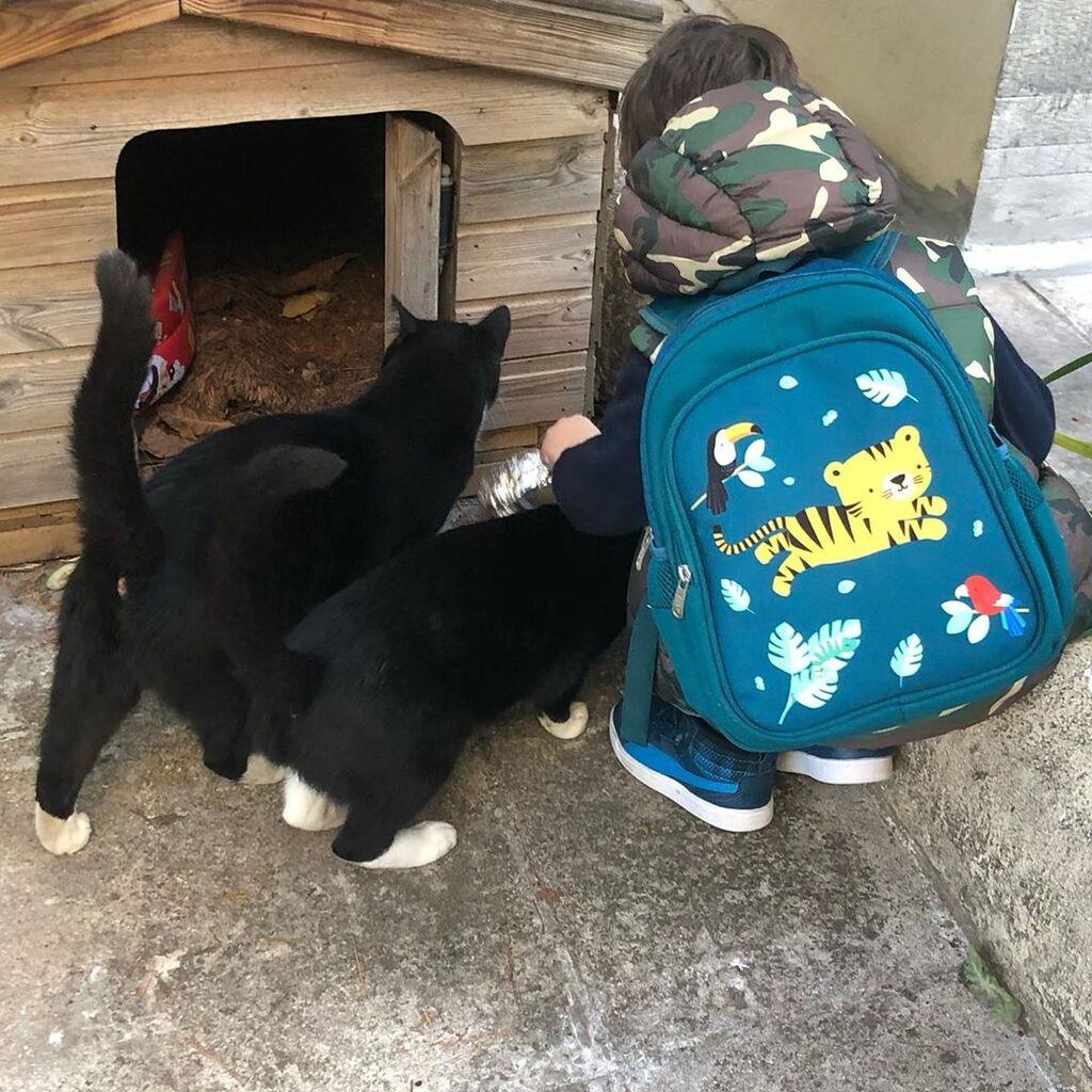 Ο γιος της Ρούλας Ρέβη ταΐζει γάτες