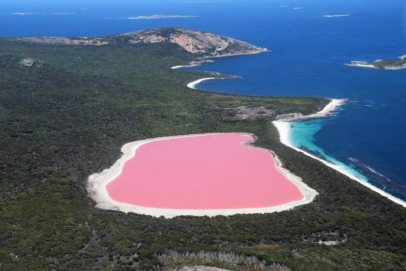 Πόλος έλξης η λίμνη Χίλιερ, λόγω του ιδιαίτερου, σπάνιου ροζ χρώματός της
