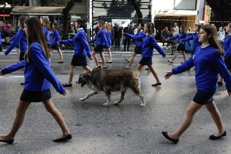 Σκύλος ανάμεσα σε μαθήτριες στην παρέλαση
