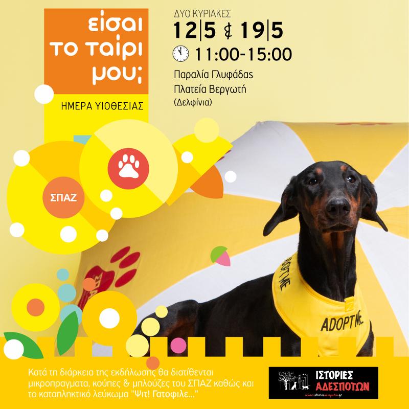 Αφίσα με σκύλο για την ημέρα υιοθεσίας