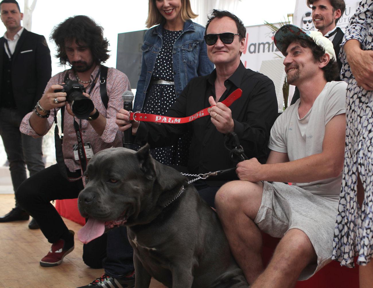 Η Μπράντι, η σκυλίτσα που πρωταγωνιστεί στην ταινία του Κουέντιν Ταραντίνο
