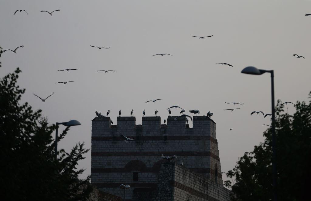 Πύργος από τμήμα των θεοδοσιανών τειχών της Κωνσταντινούπολης