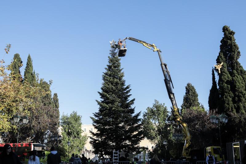 Τοποθέτηση δέντρου στην Αθήνα